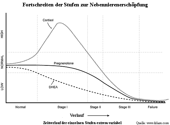Stufen von Adrenal-Fatigue